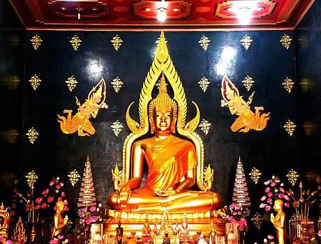 Golden Buddha  by Sachin Manawaria