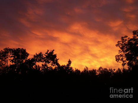 Golden clouds by Cindy Hudson