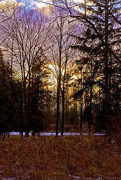 LeeAnn McLaneGoetz McLaneGoetzStudioLLCcom - Golden fields and Violet Sky