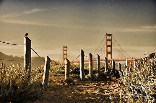 Golden Gate Bridge - 3 by Mark Madere