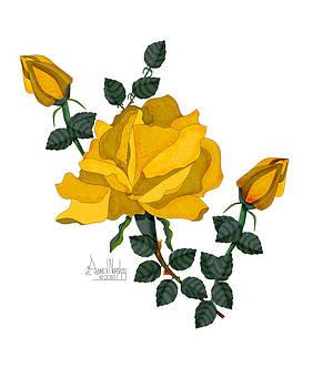 Golden Glory by Anne V Norskog