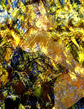 Golden Shadows by Seth Weaver