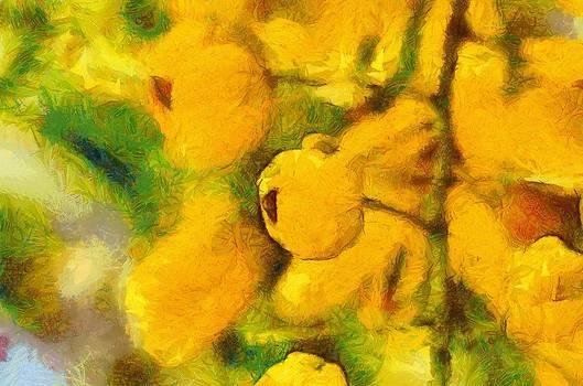 Golden Shower by Balram Panikkaserry