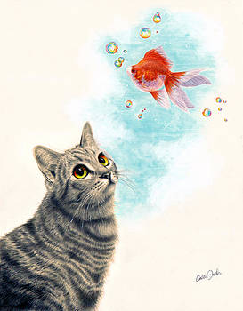 Goldfish Dreams by Callie Fink