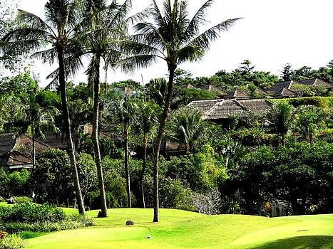 Xafira Mendonsa - Golf Court