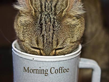 Good Morning by Susan Leggett
