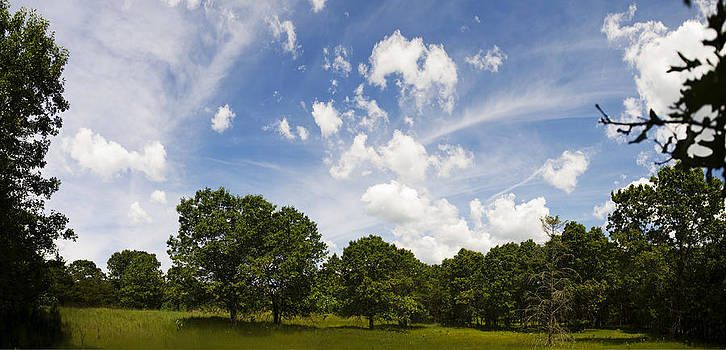 Gorgeous Summer Sky by Jennifer Brindley