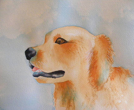 Gotta Love a Golden by Carol Bruno