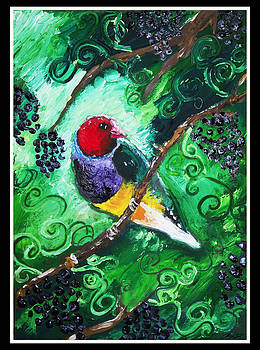 Gouldian Vine by Sydney Gregory