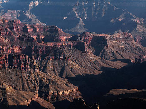 Grand Canyon by Aurica Voss