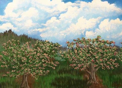 Grandpa's Orchard by Jennifer Jeffris