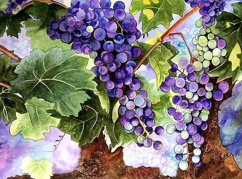 Grape Vines by Karen Casciani
