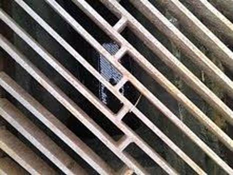 Grate Photographer by Theodore Johnson