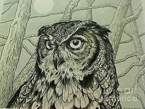 Great Horned Owl by Kimberlee  Ketterman Edgar