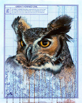 Great Horned Owl by Peter Ambush