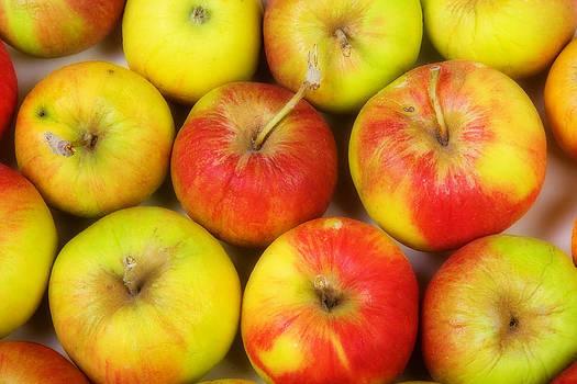 James BO  Insogna - Green Apples