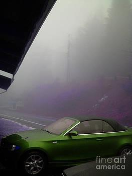 Green Car by Beebe  Barksdale-Bruner