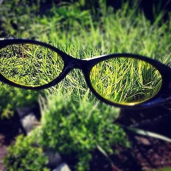Green Glasses by Steve Garfield