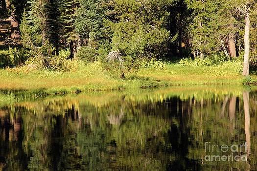 Adam Jewell - Green In Summit Lake