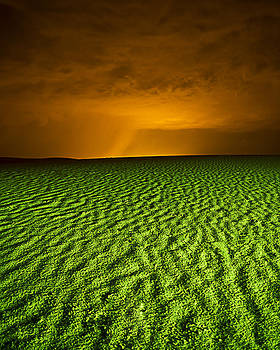 Green Sands New Mexico by Bob Bailey