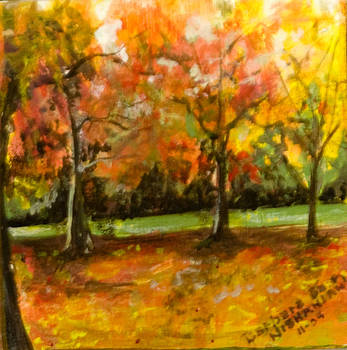 Green Stream by Barbara Barry-Nishanian