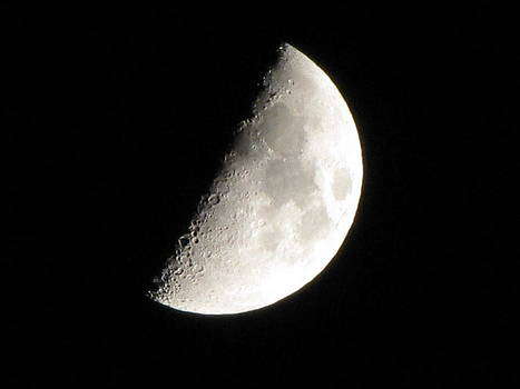 Shane Brumfield - Half Moon