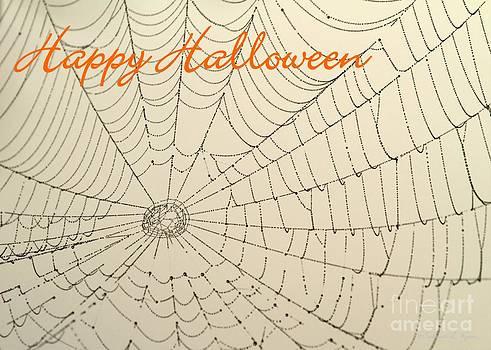 Sabrina L Ryan - Halloween Spider Web Card