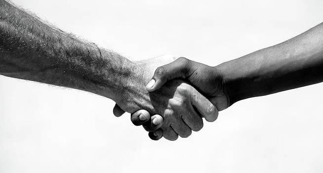 Michael Ledray - handshake