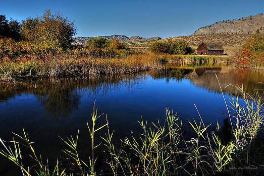 Hanes Pond by Wesley Allen Shaw