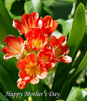 Happy Mother's Day by Monica Lahr