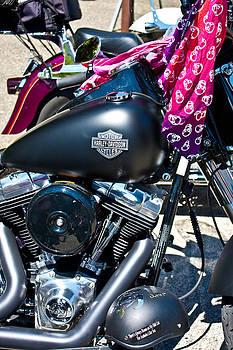 Harley Black by Aidan Minter