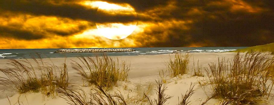 Randall Branham - Harvest Moon Beach