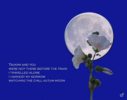 Peri Craig - Harvest Moon