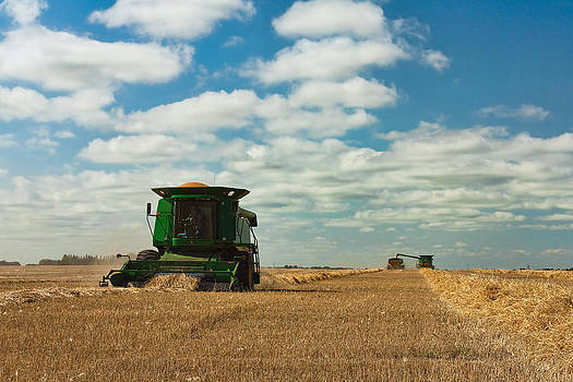Matt Dobson - Harvest on the Canadian Prairies
