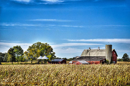 Harvest Time by Dan Crosby