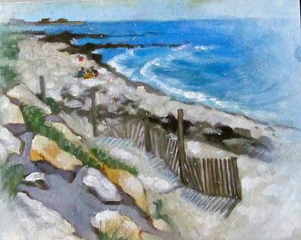 Harwich Port Beach by Janet McGrath