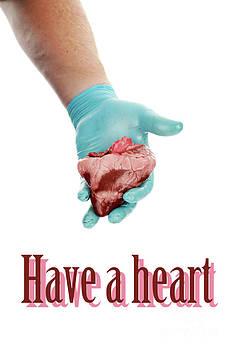 Michael Ledray - Have a heart