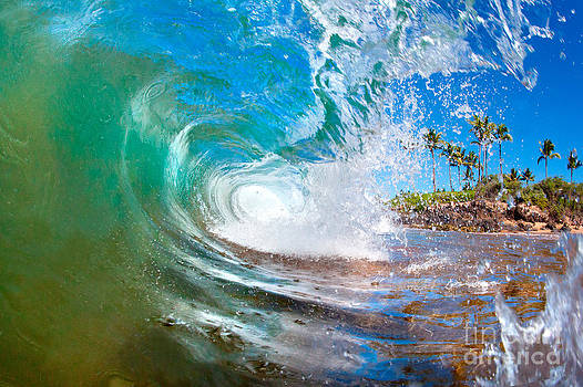 Hawaii Green Glass by Monica and Michael Sweet