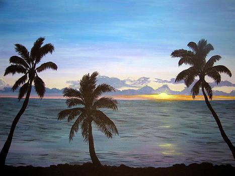 Hawaiian Sunset Dream by Amy Scholten