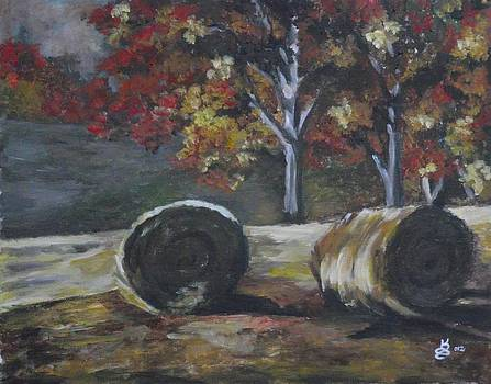 Hay Bales in Fall by Kim Selig