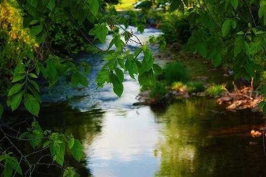 Hay Creek by Melissa Richter