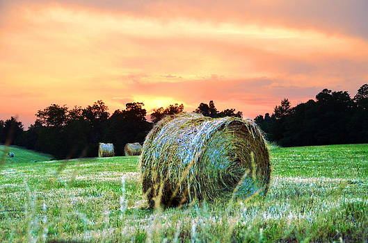 Haybales at sunset by Esther Luna