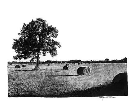 Hayfield by Gary Gackstatter