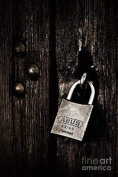 He Held The Key To Her Heart by Tamara Pruessner