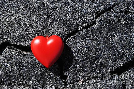 Sami Sarkis - Heartshape on cold black lava