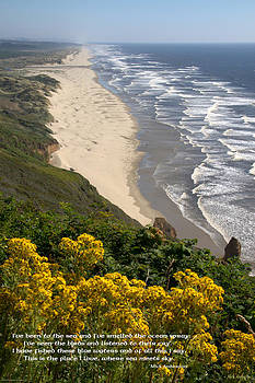 Mick Anderson - Heceta Beach View