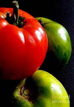 Heirloom Tomatoes by Maria Scarfone