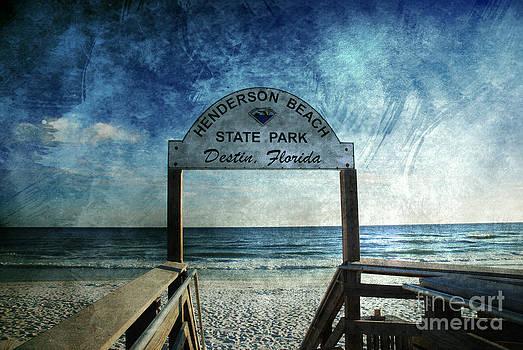 Susanne Van Hulst - Henderson Beach State Park Florida