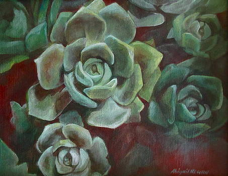 Hens and Chicks by Abigail Newman