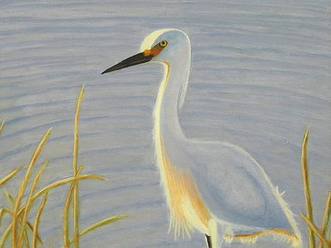 Heron by Trombly